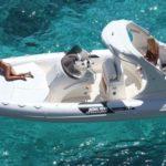 Gommone Joker Boat Wide 750 Wide750 0 Uai 387x387