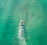 Seadoo Fish Pro Noleggio Vendita Lago Di Garda 17